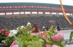 2020菏泽牡丹花节什么时候,在几月份,4月10号和您云赏牡丹