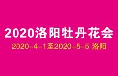 2020年洛阳牡丹花会能正常举行吗?啥时间开始